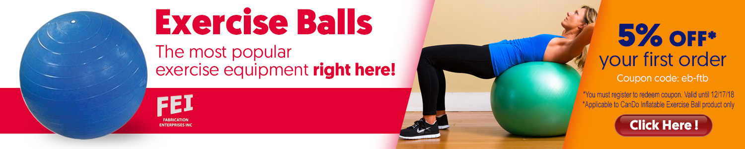 FEI Excercise Balls right here on Lay Off Pain